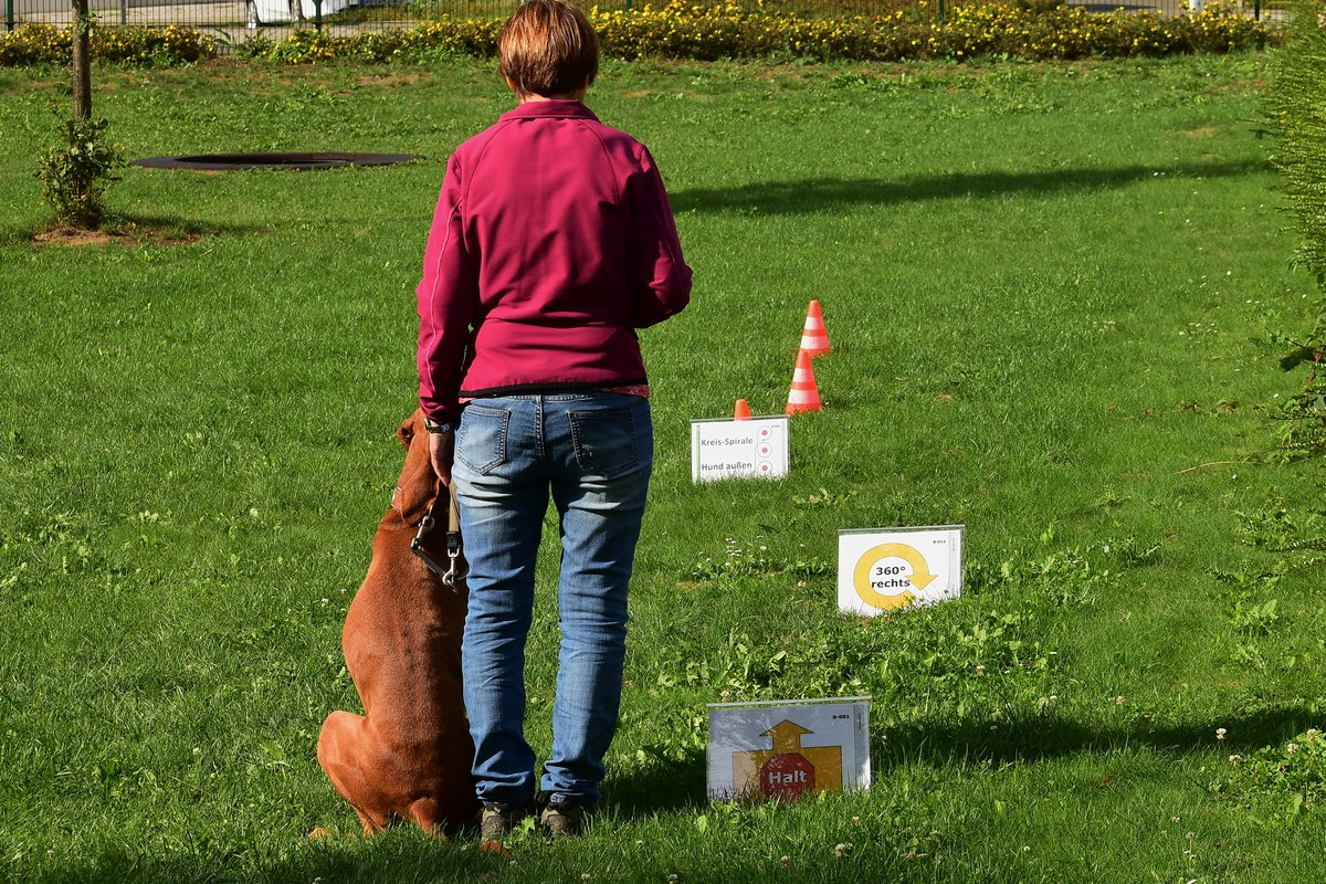 Rally Obedience in Hennef - Parcours